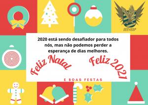 BOAS FESTAS .... FELIZ 2021